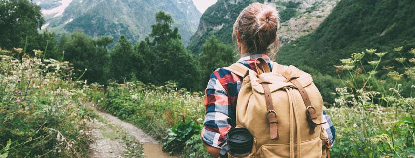 Vacances en ligne pour découvrir le parc national des alpilles
